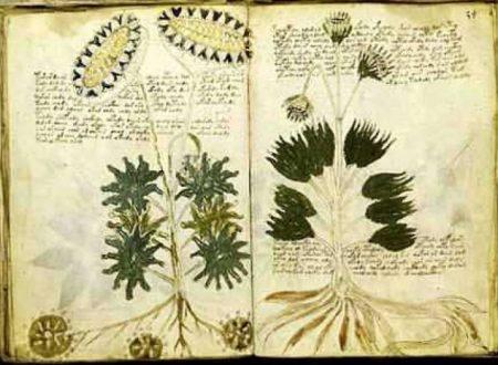 L'enigma non risolto: il manoscritto di Vovnich